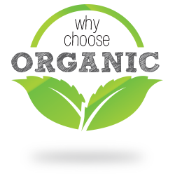 How to Choose the Best Organic Foods